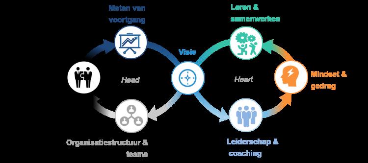 Organisatieverandering aan de hand van het hoofd en hart-model - Consultancy