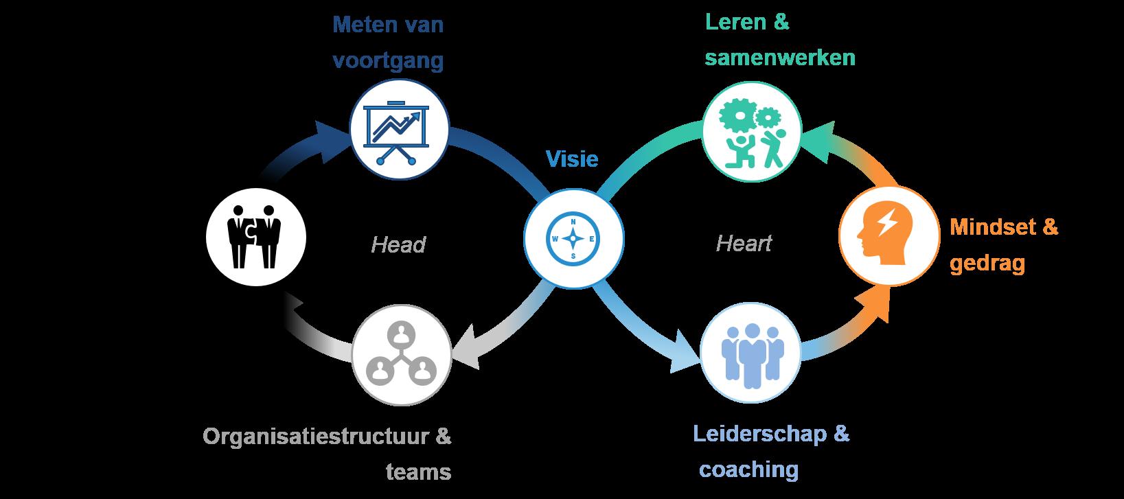 Transformatie - Organisatieverandering aan de hand van het hoofd en hart-model - Consultancy