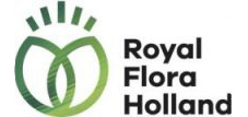 royal-flora-holland-strategische-besturing-transformatie-been-management-consulting