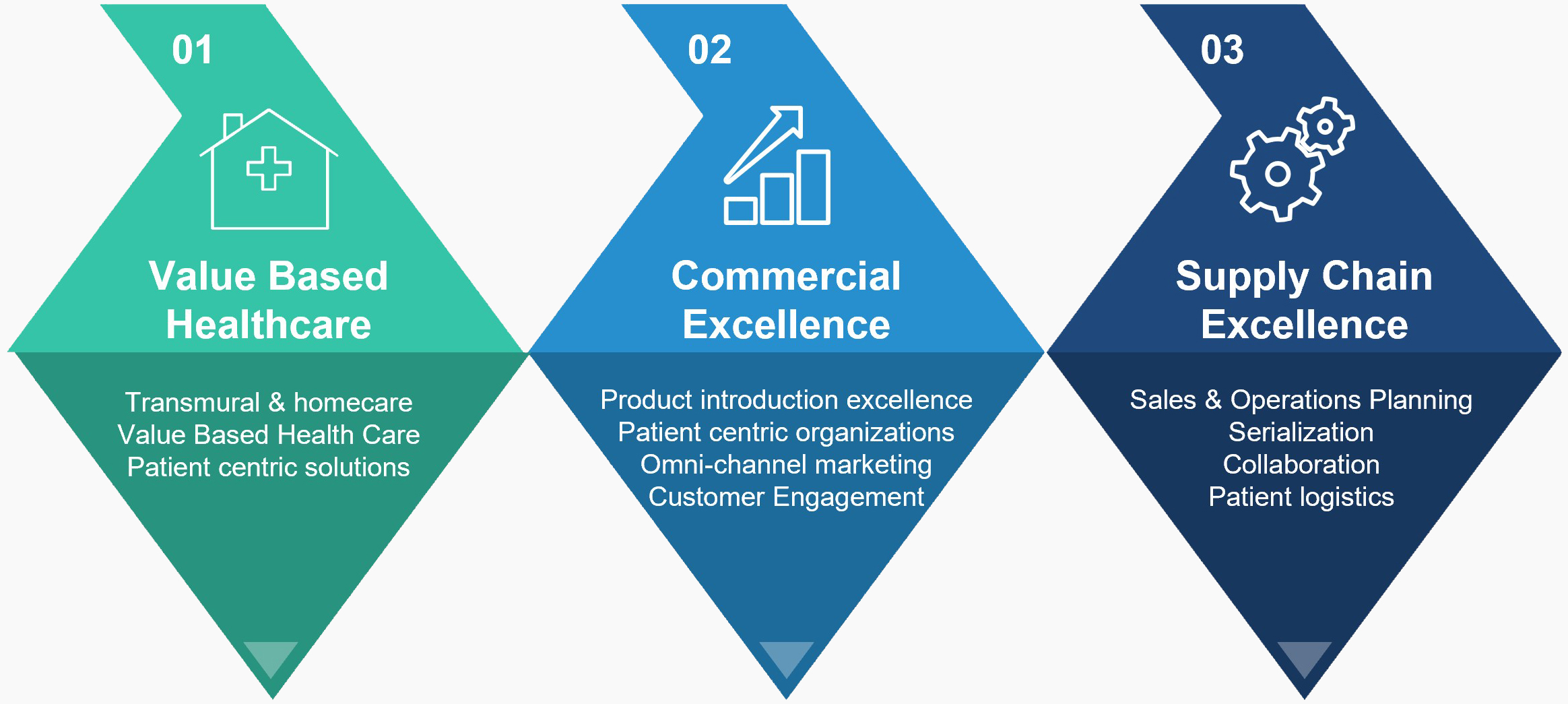 VBHC-Commercial-Excellence-Supply-Chain-Farma-Life-Sciences-Been-Management-Consulting-grijs