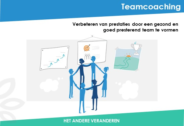 Teamcoaching-Been-Management-Consulting-Dia1