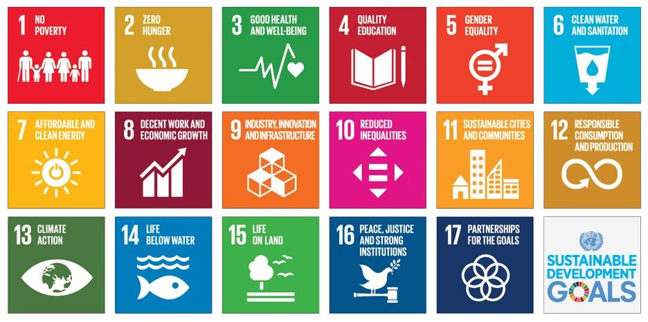 SDG-consultants-been-management-consultant